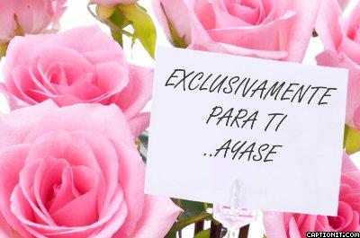 FELIZ CUMPLEAÑOS AYASE AMADA Captionit0181704653D32